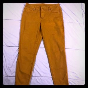 Maurices Mustard Jeggings